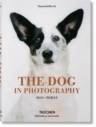 DOG IN PHOTOGRAPHY 1839 TODAY (AL/FR/IN), THE