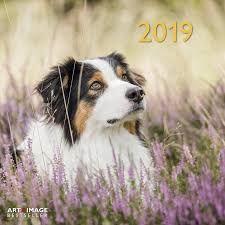 CALENDAR 2019 DOGS