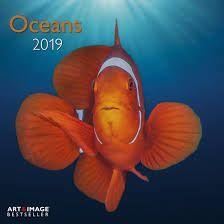 CALENDAR 2019 OCEANS