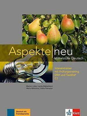 ASPEKTE NEU 3 INTENSIVTRAINER