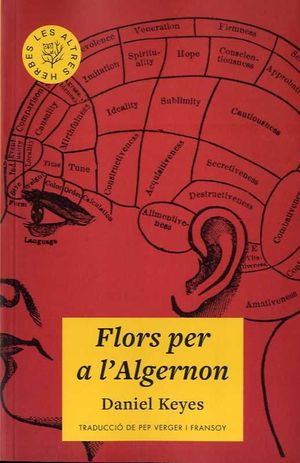 FLORS PER A L'ALGERNON