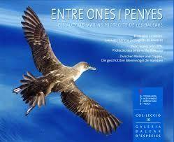 ENTRE ONES I PENYES. AUCELLS MARINS PROTEGITS DE LES BALEARS