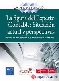 FIGURA DEL EXPERTO CONTABLE: SITUACIÓN ACTUAL Y PERSPECTIVAS, LA