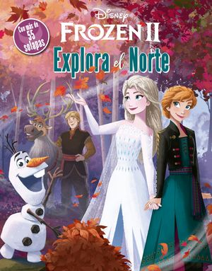 FROZEN 2 - EXPLORA EL NORTE