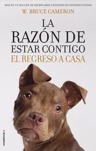 RAZÓN DE ESTAR CONTIGO III, LA - EL REGRESO A CASA