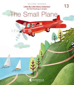 SMALL PLANE, THE