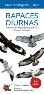 RAPACES DIURNAS - INTRODUCCIÓN A LAS ESPECIES IBÉRICAS, BALEARES Y CANARIAS