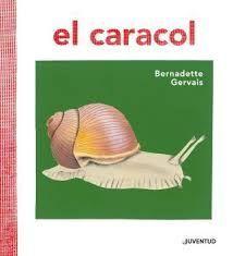 CARACOL, EL