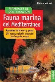 FAUNA MARINA DEL MEDITERRANEO