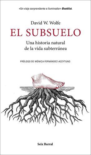 SUBSUELO, EL