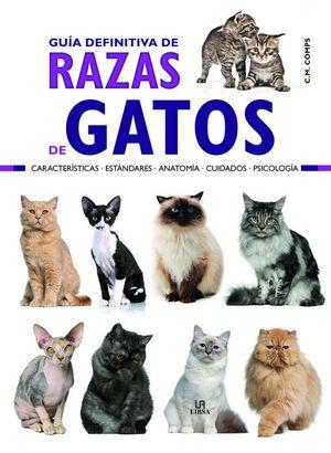 RAZAS DE GATOS, GUÍA DEFINITIVA DE