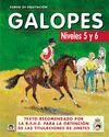 GALOPES. NIVELES 5 Y 6 CURSO DE EQUITACION