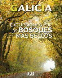 EXCURSIONES A LOS BOSQUES MAS BELLOS. GALICIA