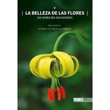 BELLEZA DE LAS FLORES, LA