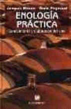 ENOLOGIA PRACTICA. CONOCIMIENTO Y ELABORACION DEL VINO (4ª EDICION)