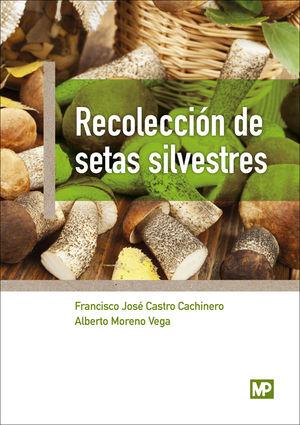 RECOLECCIÓN DE SETAS SILVESTRES
