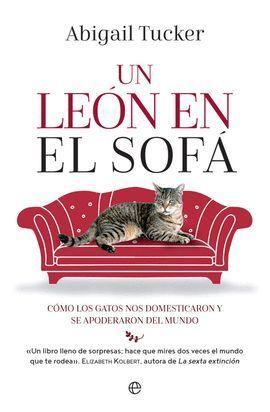 LEÓN EN EL SOFÁ, UN