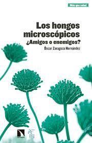 HONGOS MICROSCÓPICOS, LOS