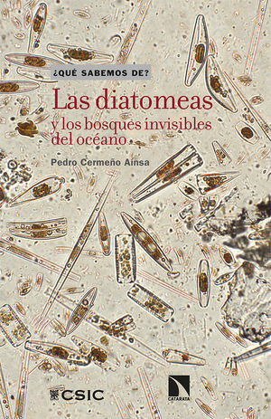 DIATOMEAS Y LOS BOSQUES INVISIBLES DEL OCÉANO, LAS