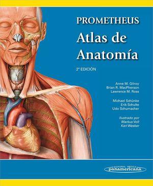 PROMETHEUS ATLAS DE ANATOMIA (4ª EDICION) (VERSIÓN PAPEL + DIGITAL)