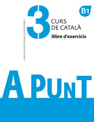 A PUNT 3 (B1). LLIBRE D´EXERCICIS 3. CURS DE CATALÀ.