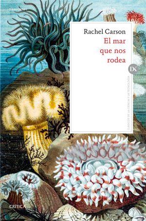 MAR QUE NOS RODEA, EL
