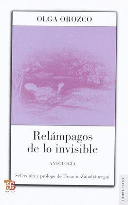 RELAMPAGOS DE LO INVISIBLE